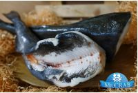 Угольная рыба (черная треска) без головы, 1 кг
