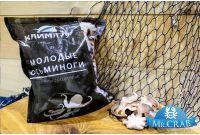 Осьминоги молодые мини, очищенные 40/60, 1 кг