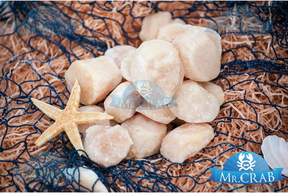 Гребешок приморский (штучка), 1 кг