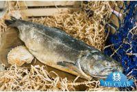 Рыба чавыча целая, 1 кг
